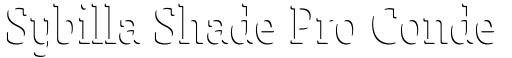 Sybilla Shade Pro Condensed Thin