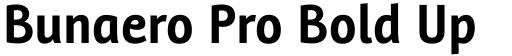Bunaero Pro Bold Up