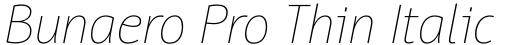 Bunaero Pro Thin Italic