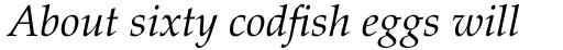 Palatino Italic sample