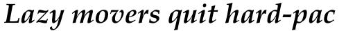 Palatino Bold Italic sample