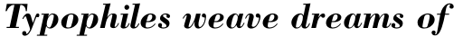 Bodoni Bold Italic sample