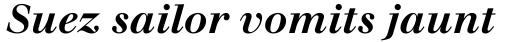 Walbaum Bold Italic sample