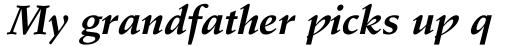 Stempel Schneidler Bold Italic sample