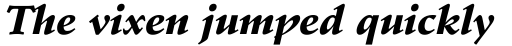 Stempel Schneidler Black Italic sample