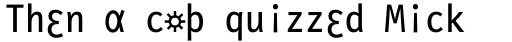 FF Letter Gothic Slang OT Roman sample