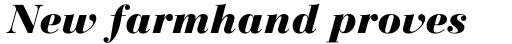 Bauer Bodoni Black Italic sample