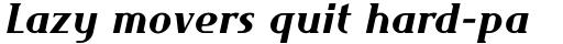 FF Maverick Bold Italic sample