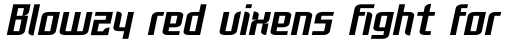 FF Rosetta Bold Italic sample