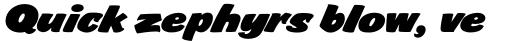 FF Sale Bold Italic sample