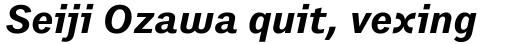 Preface Bold Italic sample