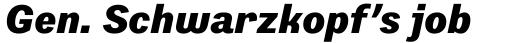 Preface Black Italic sample