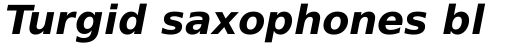 Prima Sans Bold Oblique sample