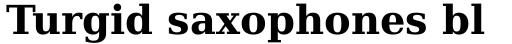 Prima Serif Bold sample