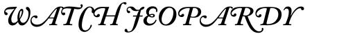 Adobe Caslon SemiBold Italic Swash sample