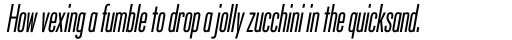 Silverscreen Italic sample