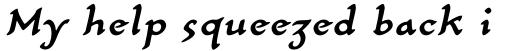 Carlin Script Medium Italic sample