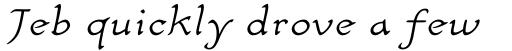 Carlin Script Light Italic sample