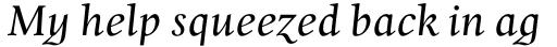 Whitenights Italic sample