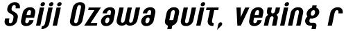 Seebad Bold Italic sample