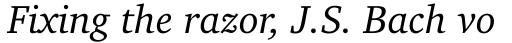 Charter BT Pro Italic sample