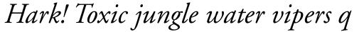 Adobe Garamond Italic Oldstyle Figures sample