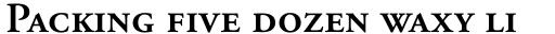 Adobe Garamond SemiBold Small Caps & Oldstyle Figures sample