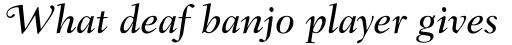 Fairfield LH 56 Swash Medium Italic Old Style Figures sample