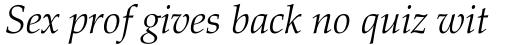 Palatino Light Italic sample