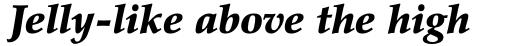 Palatino Black Italic sample