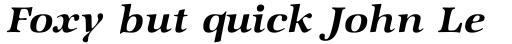 Zapf Intl Demi Italic sample