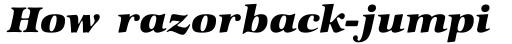 Zapf Intl Heavy Italic sample