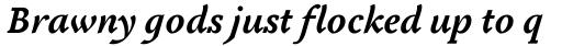 Tactile OS Bold Italic sample