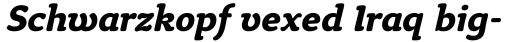 Tyke Bold Italic sample