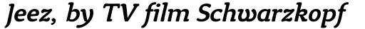 Tyke Medium Italic sample