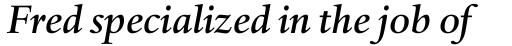 Haarlemmer MT Medium Italic OsF sample