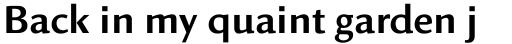 Linex Sans sample