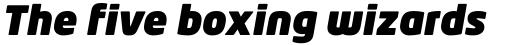 Neo Tech Ultra Italic sample