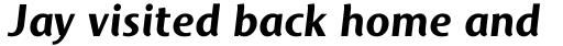 Mosquito Bold Italic sample