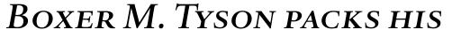 Haarlemmer MT Medium Italic SC sample
