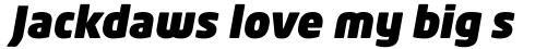 Neo Tech Ultra Italic Alt sample