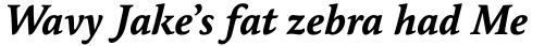 Maxime Bold Italic OSF sample