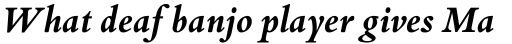 Bembo Book Bold Italic OsF sample