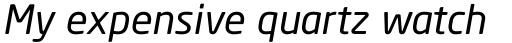 Neo Sans Italic sample
