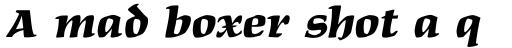 Maidenhead Black Italic sample