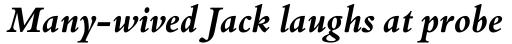Bembo Book Bold Italic sample