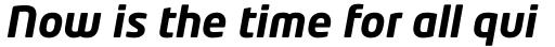 Neo Tech Bold Italic sample
