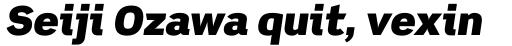 Scene Alt UltraBlack Italic sample