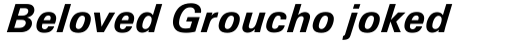 Univers 66 Bold Italic sample