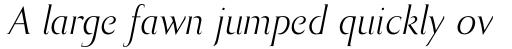 Bodebeck Italic sample